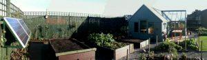 Brandon Community garden 2012